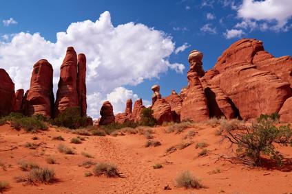 desert3.jpg (15483 bytes)