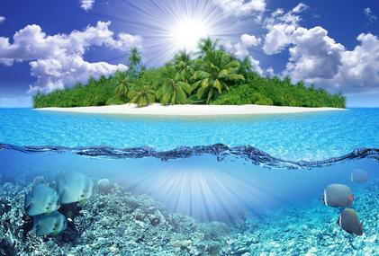 island2.jpg (7784 bytes)