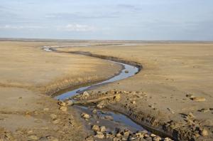 Arroyo (wash) landform