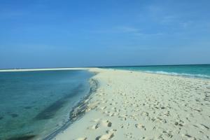 sandbar Landform